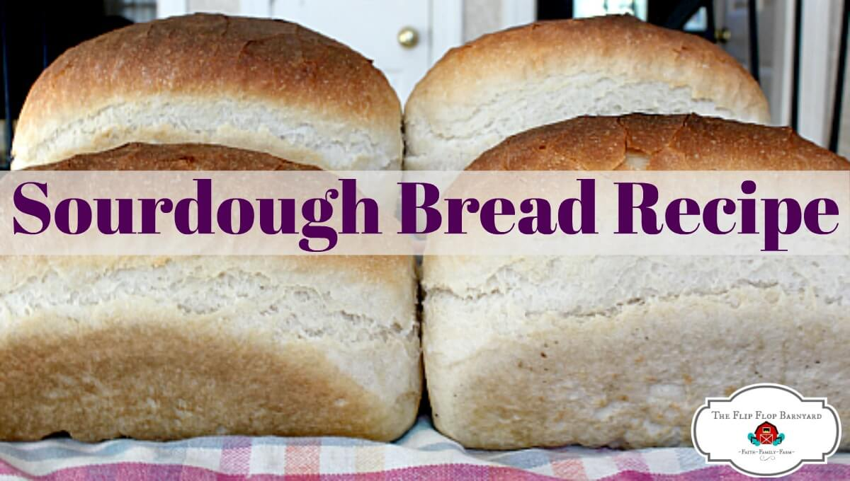 The BEST Sourdough Bread Recipe Around