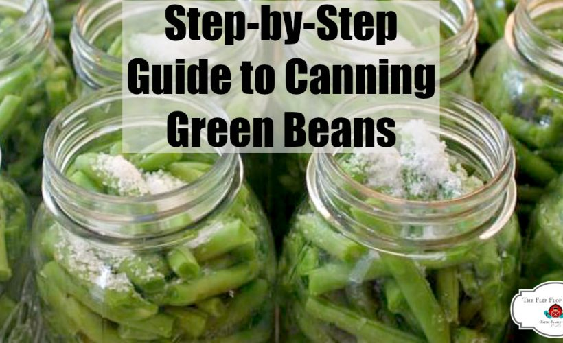 green beans in jars