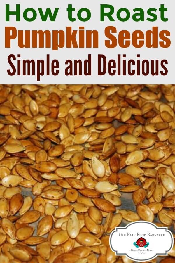 A photo of roasted pumpkin seeds