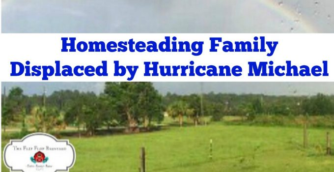 Displaced by Hurricane Michael
