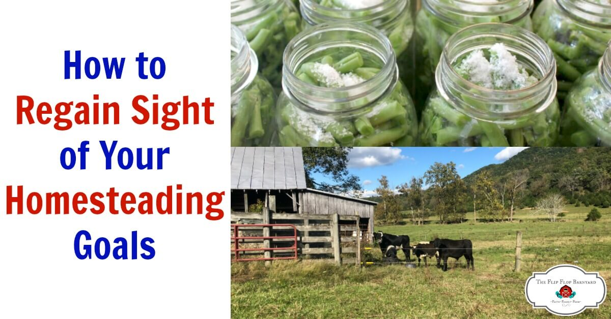 How to Regain Sight of Your Homesteading Goals